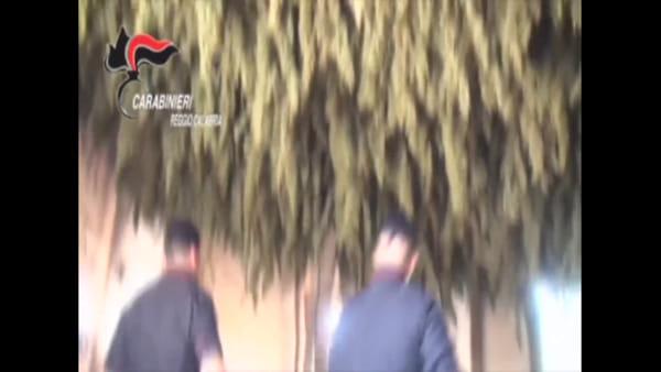 Fiumi di droga, dalla Piana di Gioia Tauro a Cortina d'Ampezzo: 15 arresti |VIDEO