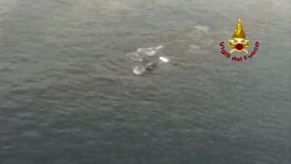 Due grandi balene attraversano lo Stretto, un vero spettacolo della natura |VIDEO